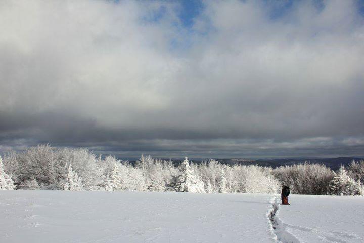 Regulamin Zimowego Maratonu Bieszczadzkiego