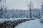 Tymczasem na trasie Zimowego Maratonu Bieszczadzkiego…