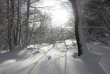 Zgłoszenia na II Zimowy Maraton Bieszczadzki 2016